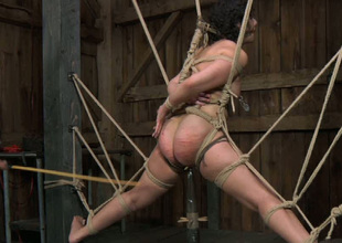 Pre-eminent bondage master whips his slave's buxom ass meticulous and hard
