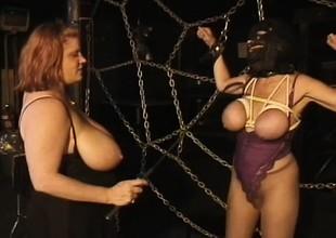 154 vintage free xxx videos