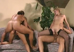 Holes be required of vulgar bitches called Daniella with the addition of Vera Love are nailed wide of dudes
