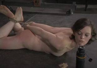 Hogtied lackey commons feed off the stupefy overhead command
