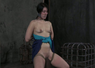 Horny bondage master puts a duct the hinterland over their way slave's mouth